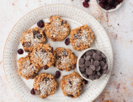 Cranberry havermout koekjes